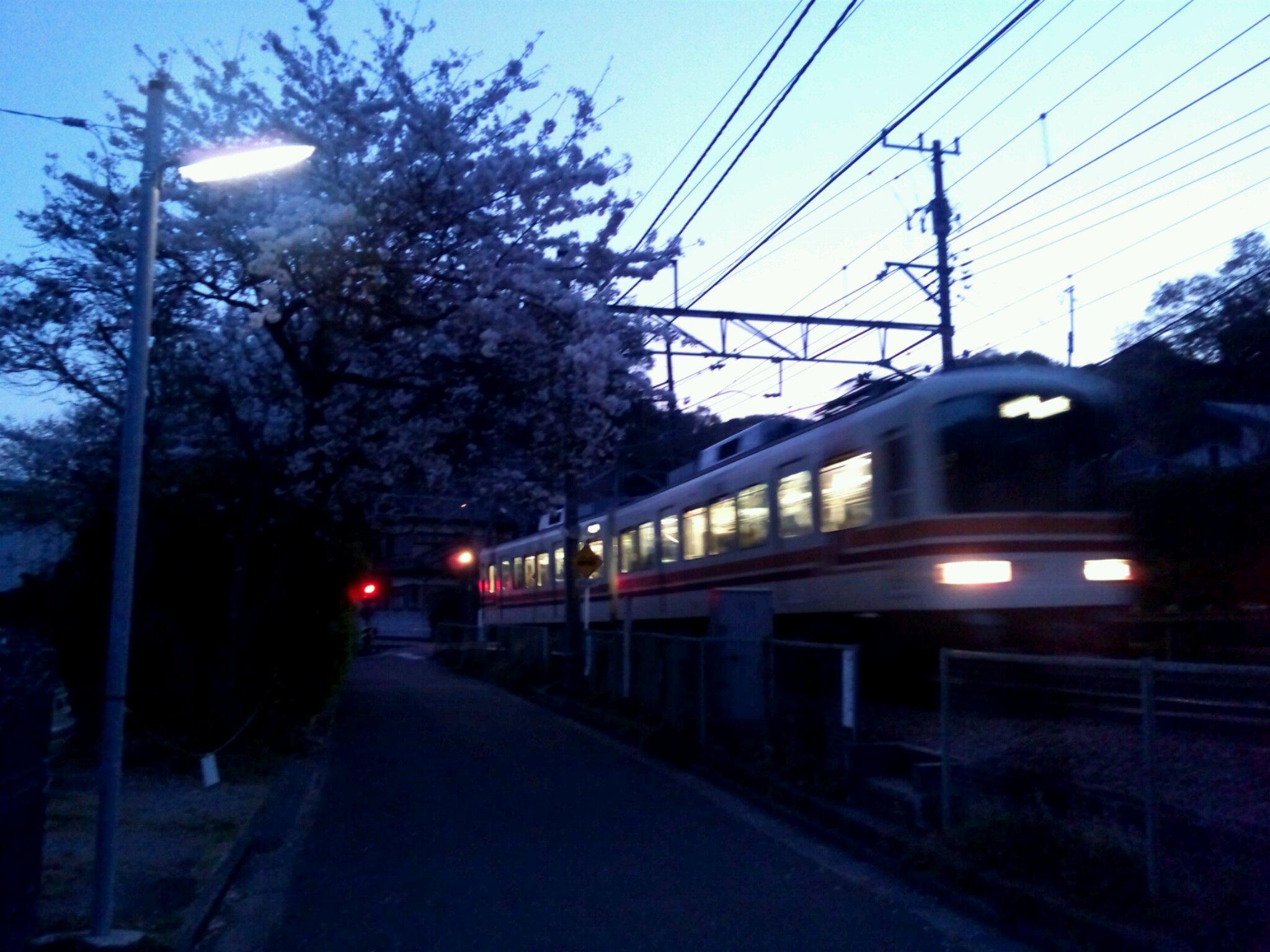 心の中で三春の桜を想う。その1