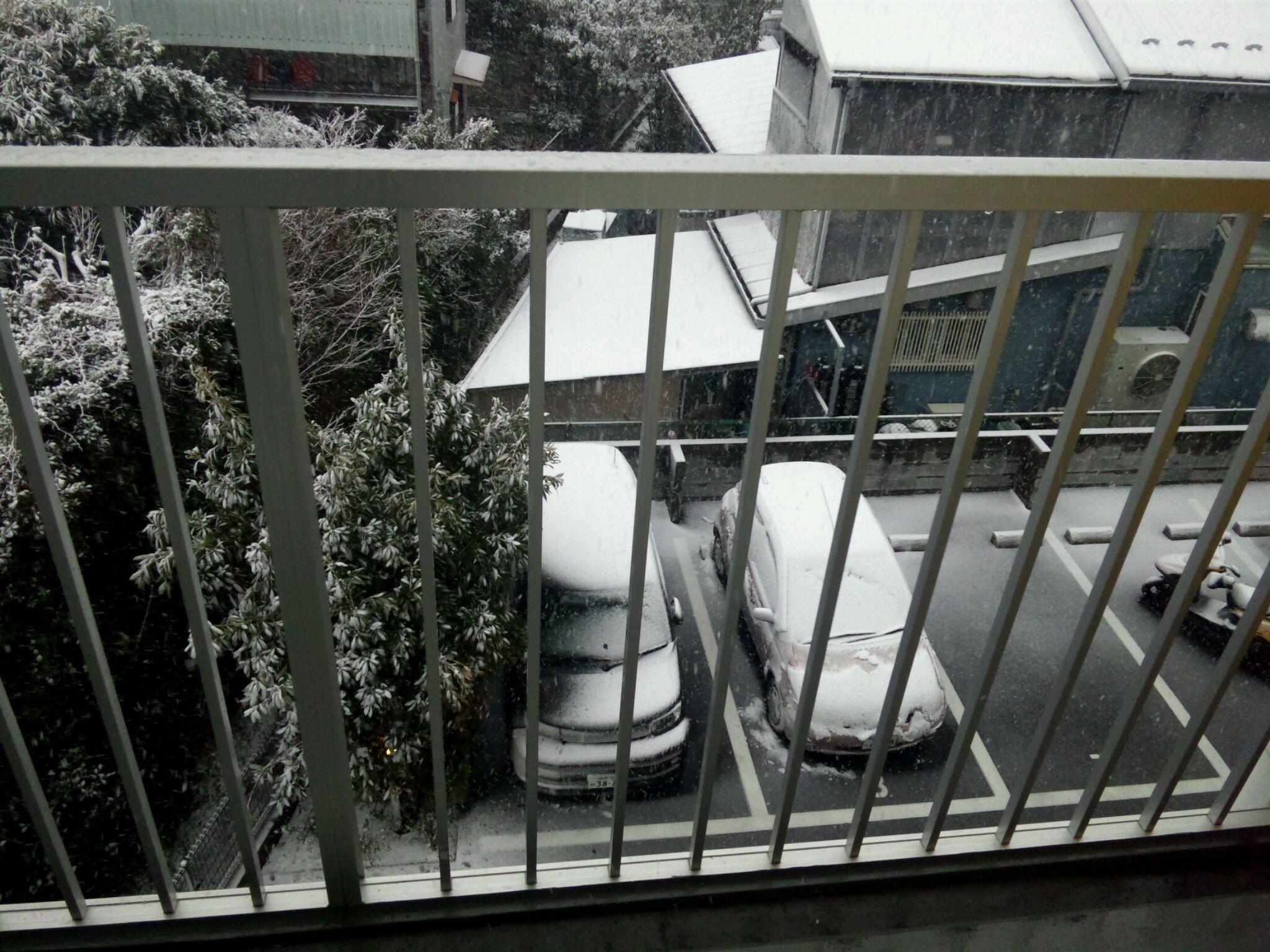 藤沢は、雪です。おそらくこれが、今年最後の「なごり雪」となるでしょう。