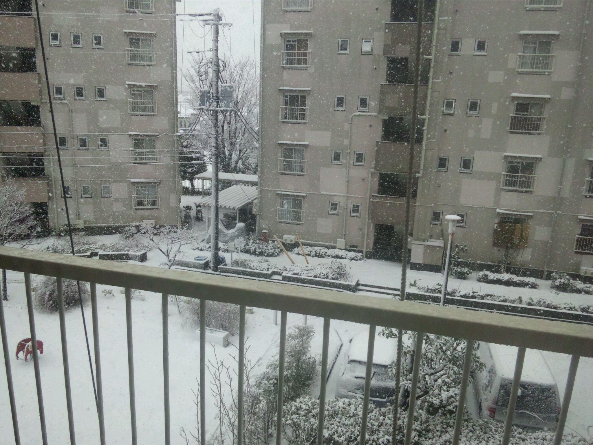 雪は幸運の女神。